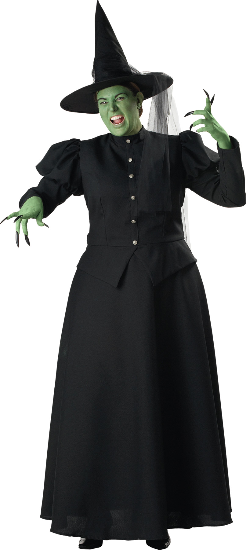 Women's Classic Plus Size Wicked Witch Complete Costume