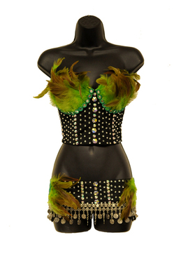 2 Piece Feather Belly Dancer Costume Set