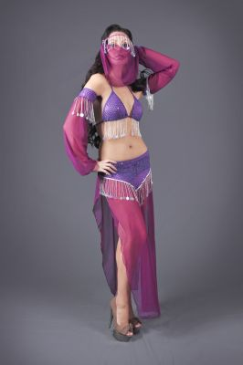 Belly Dancer Genie Costume 5 Piece Set in Red or Purple (Color: (R-P): Purple)