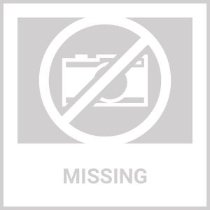 Top Drawer Elegant Floral Embroidered Steel Boned Corset Dress in 3 Color Options (Color: (GdBlPk): Gold)
